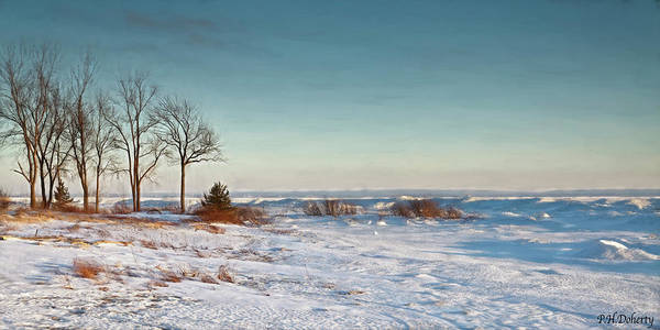 Frozen Lake Digital Art - January Shoreline On Erie by Phill Doherty