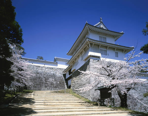 Ornate Photograph - Japan, Fukushima Prefecture by Takao Nishida