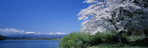 Wall Art - Photograph - Japan, Miyagi Prefecture, Zao Mountain by Takahiro Miyamoto