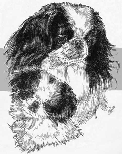 Drawing - Japanese Chin And Pup by Barbara Keith