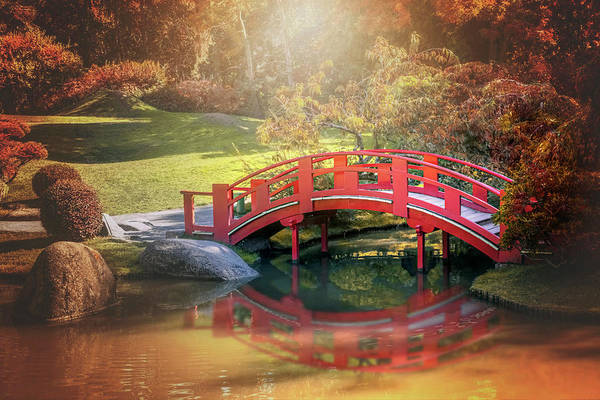 Koi Pond Photograph - Japanese Garden And Bridge Toulouse France  by Carol Japp