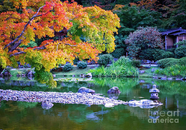 Photograph - Japanese Garden by Mary Capriole