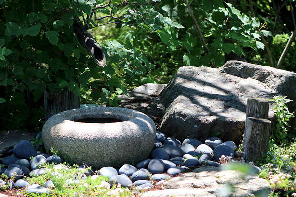 Photograph - Japanese Stone Water Basin In Landscape by Colleen Cornelius