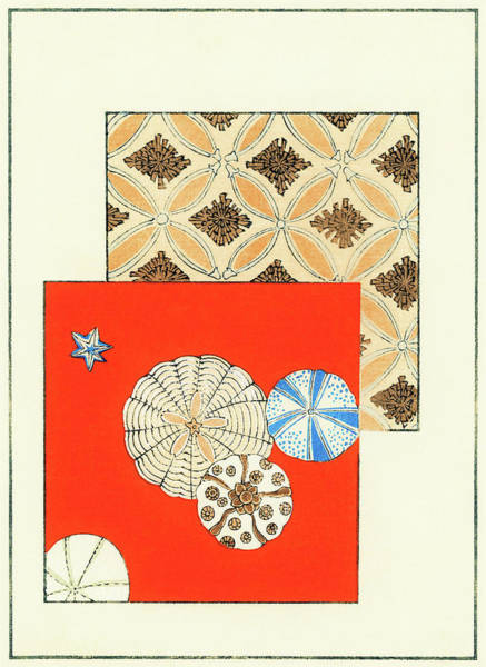 Wall Art - Painting - Shell - Japanese Traditional Pattern Design by Watanabe Seitei