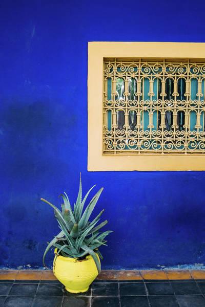Wall Art - Photograph - Jardin Majorelle Marrakech by Pati Photography