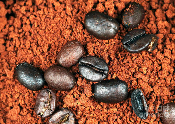 Photograph - Java Grinds Profile by John Rizzuto
