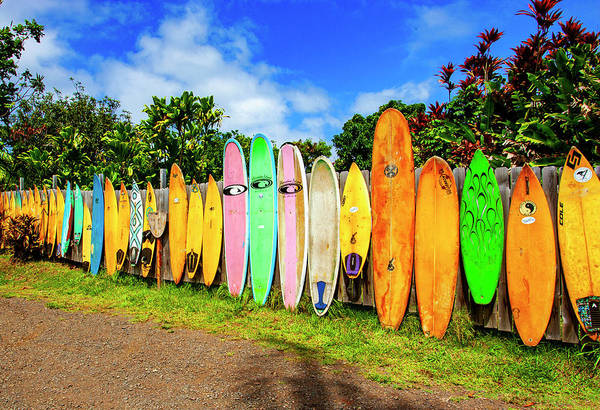 Photograph - Jaws Boards by Anthony Jones