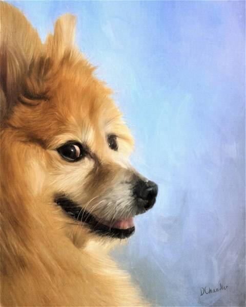 Painting - Jayjay by Diane Chandler