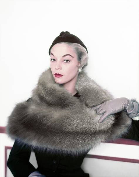 Photograph - Jean Patchett Wearing Fromm Of Wisconsin by Horst P. Horst