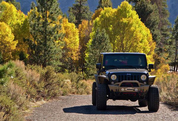 Photograph - Jeep Wrangler Among Autumn Colors by Waterdancer