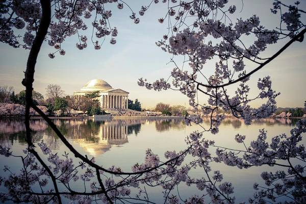 Photograph - Jefferson  by Joseph Caban