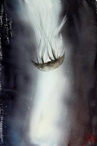 Jellyfish Painting - Jellyfish 8 by James Nyika