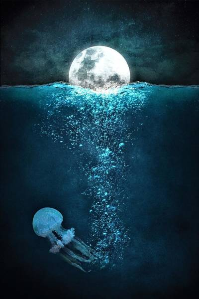 Jellyfish Painting - Jellyfish And Moon by ArtMarketJapan
