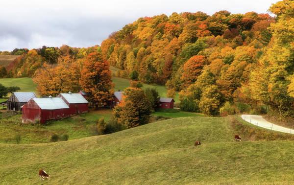 Photograph - Jenne Farm by Christina DeAngelo