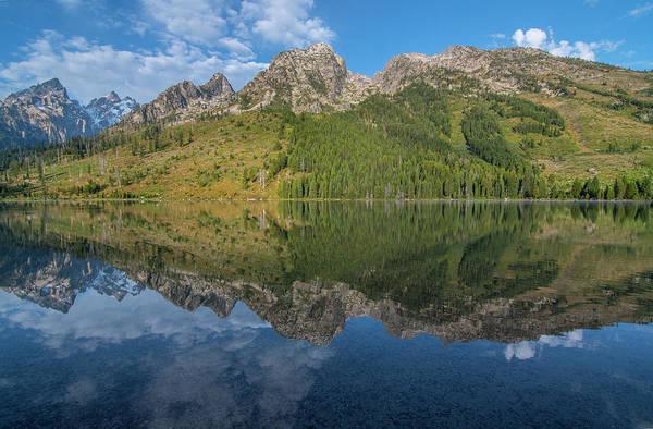 Photograph - Jenny Lake Reflections by Matthew Irvin