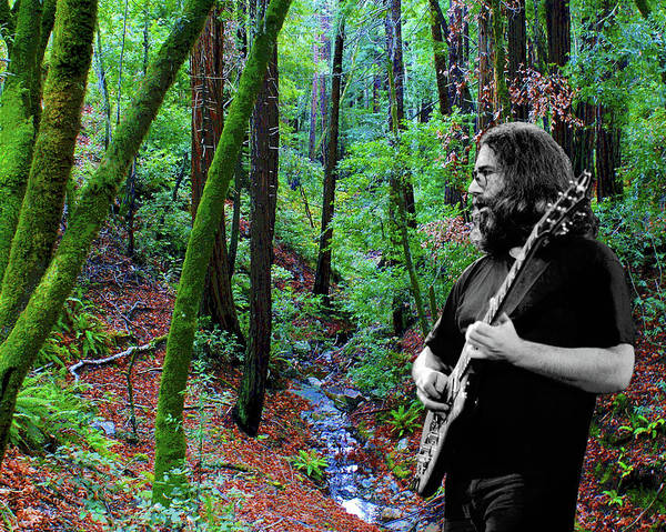 Photograph - Jerry At The Creek On Mt. Tam by Ben Upham