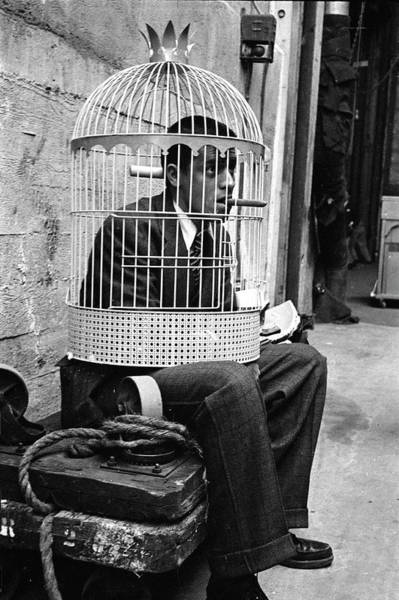 Birdcage Photograph - Jerry Lewis In A Cage by Allan Grant