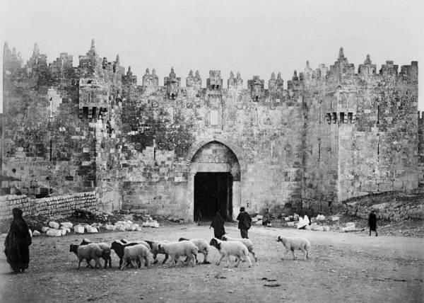 Damascus Photograph - Jerusalem Damascus Gate  by Munir Alawi