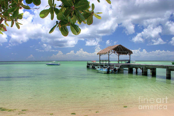 West Point Photograph - Jetty, Pigeon Point, Tobago by John Edwards