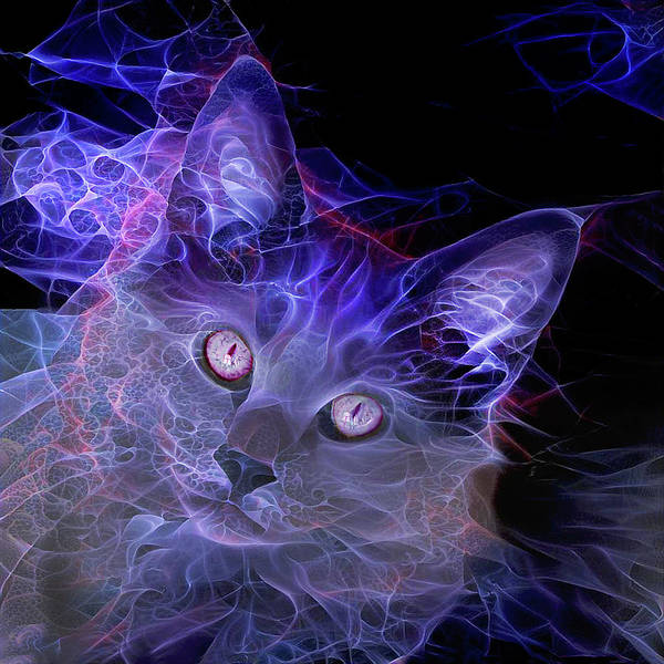 Digital Art - Jimi Hendrix Cat by Peggy Collins