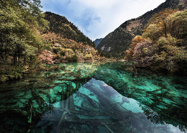 Photograph - Jiuzhaighou National Park by Martin Puddy