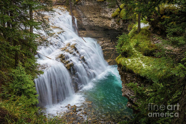 Wall Art - Photograph - Johnston Creek Cascades by Inge Johnsson