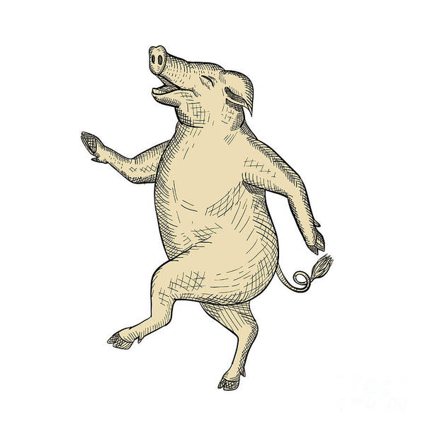 Wall Art - Digital Art - Jolly Pig Dancing Drawing Retro Color by Aloysius Patrimonio