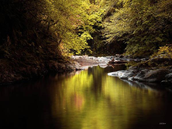 Photograph - Jordan Creek by Leland D Howard