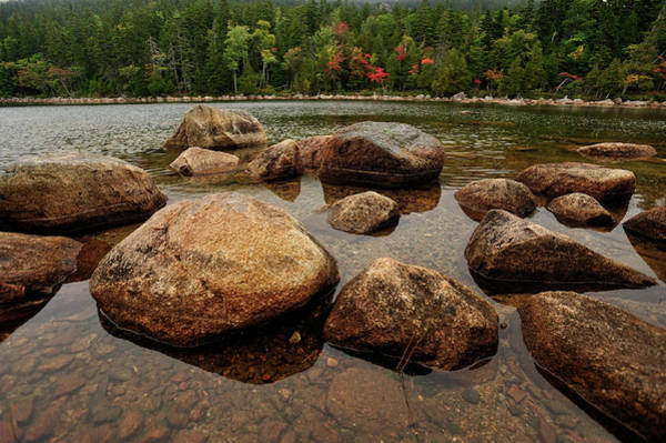 Jordon Pond Boulders Art Print