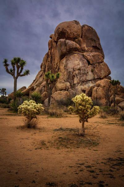 Photograph - Joshua Tree Boulders by Rick Strobaugh