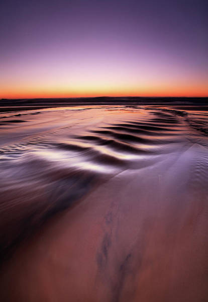 Noosa Wall Art - Photograph - Journey To Sea by Ben Cue Photography
