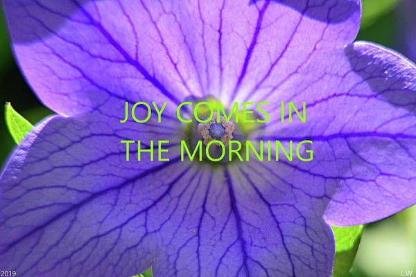 Photograph - Joy Comes In The Morning by Lisa Wooten