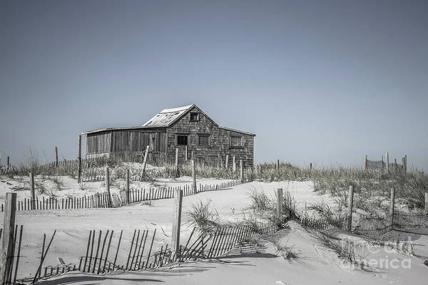 Wall Art - Photograph - Judges Shack by Colleen Kammerer