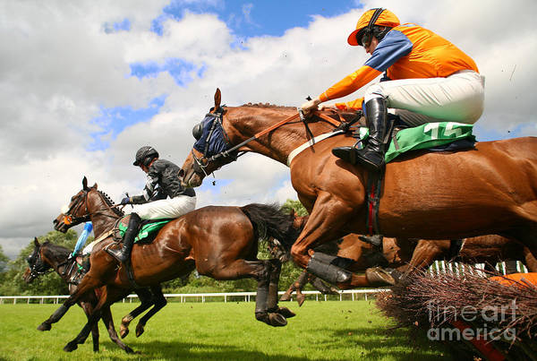 Wall Art - Photograph - Jumping Horses by Neil Roy Johnson