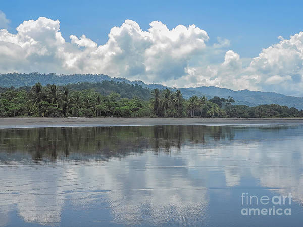Wall Art - Photograph - Jungle Beach In Costa Rica by Patricia Hofmeester