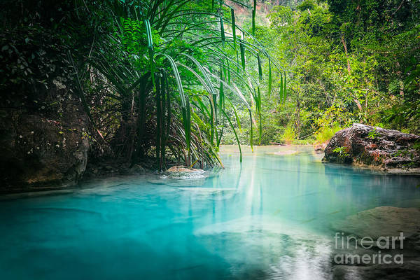 Jungle Landscape With Flowing Turquoise Art Print
