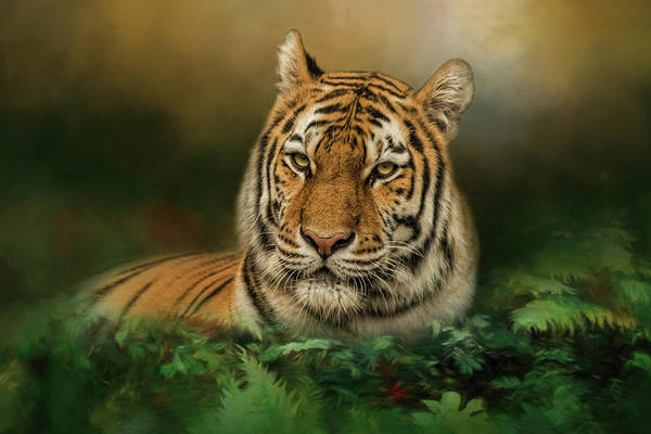 Photograph - Jungle Monarch by Kelley Parker