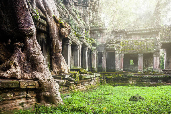 Photograph - Jungle Temple 1 by Nicole Young
