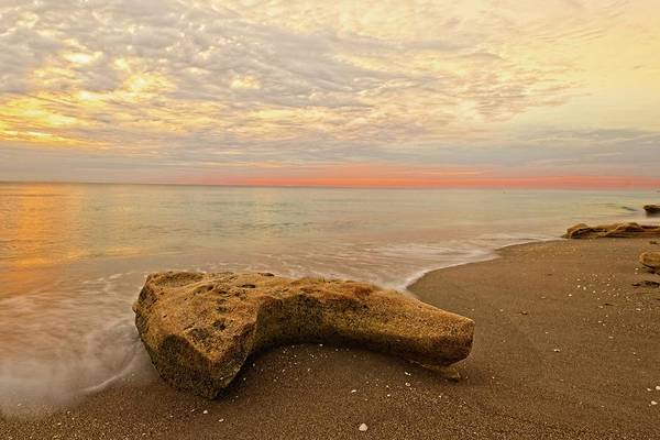 Photograph - Jupiter Beach by Steve DaPonte
