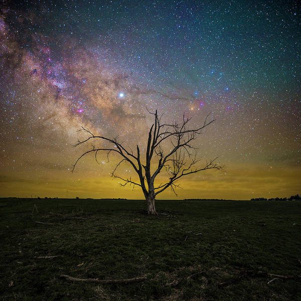Photograph - Jupiter In The Way  by Aaron J Groen
