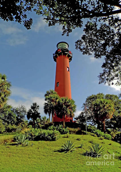 Photograph - Jupiter Lighthouse by D Hackett