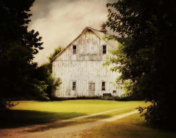 Photograph - Just A Glimps by Julie Hamilton