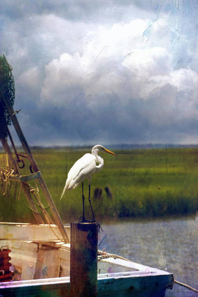 Photograph - Just Another Day On The Bay by John Rivera
