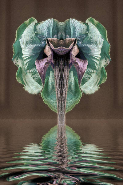 Digital Art - Just Balance by WB Johnston