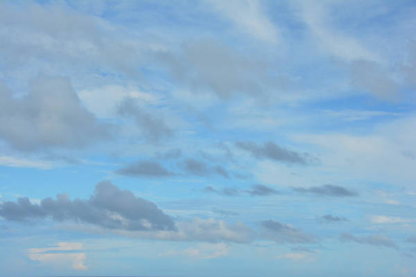 Photograph - Just Blue Skies by Jamart Photography