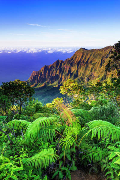 Wall Art - Photograph - Kalalau Valley And The Na Pali Coast by Russ Bishop