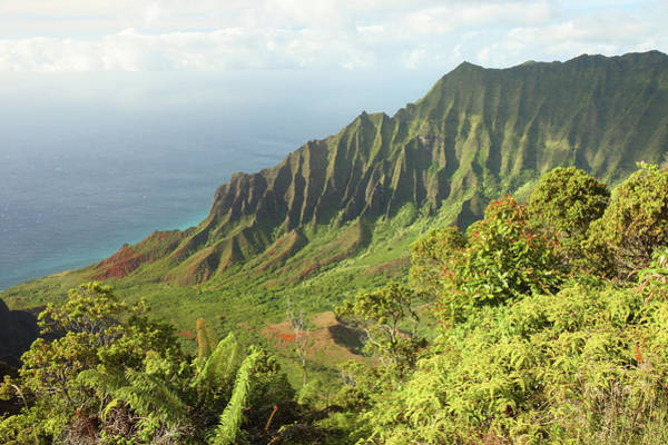 Waimea Canyon Photograph - Kalalau Valley Lookout - Kauai by Photo75