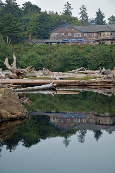 Photograph - Kalaloch Lodge Reflection And Driftwood by Bruce Gourley