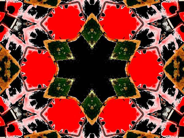 Digital Art - Kaleidoscope Abstract 10b by Artist Dot