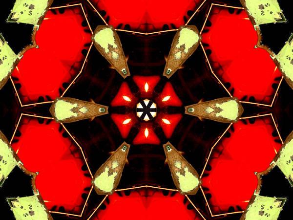 Digital Art - Kaleidoscope Abstract 11 by Artist Dot